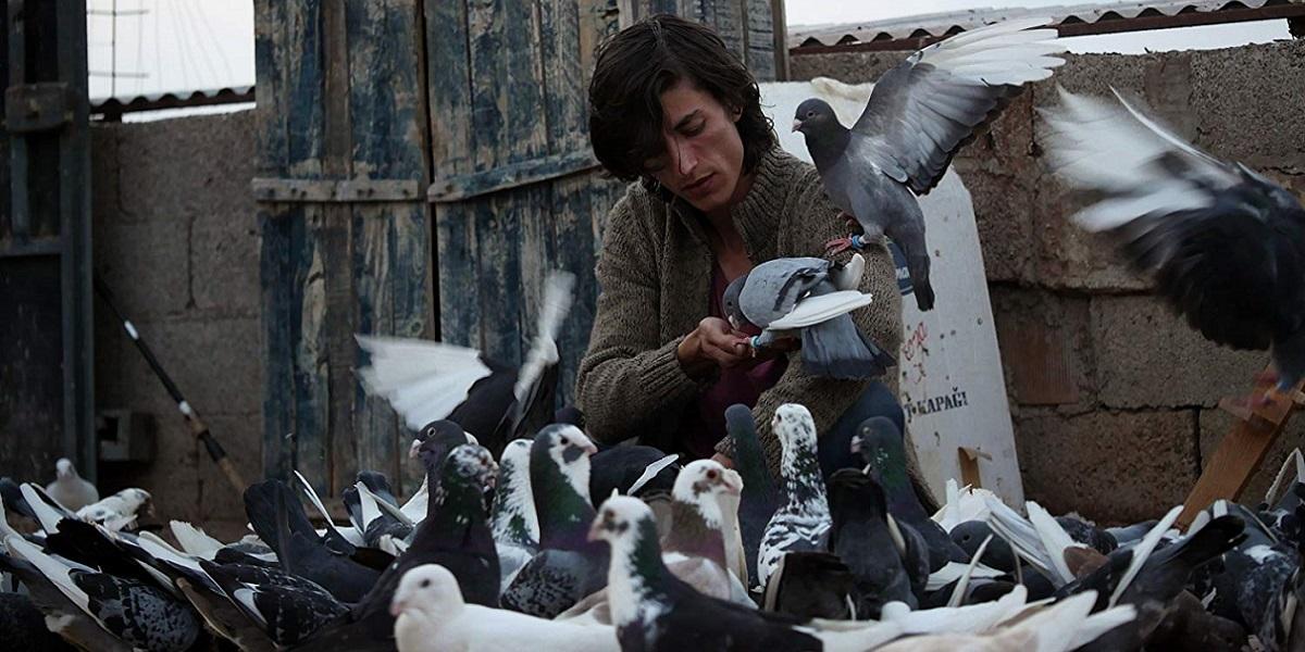 """Başka Sinema Ayvalık Film Festivali Günlükleri I İçinde Umut Besleyen Bir Film: """"Güvercin"""""""