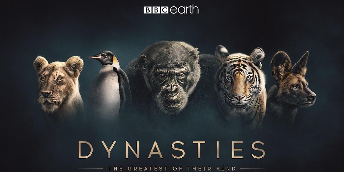 """BBC Earth'den İnsanlığımızı Sorgulatan Bir Belgesel: """"Soylar"""" I Sevtap Tuzcu"""
