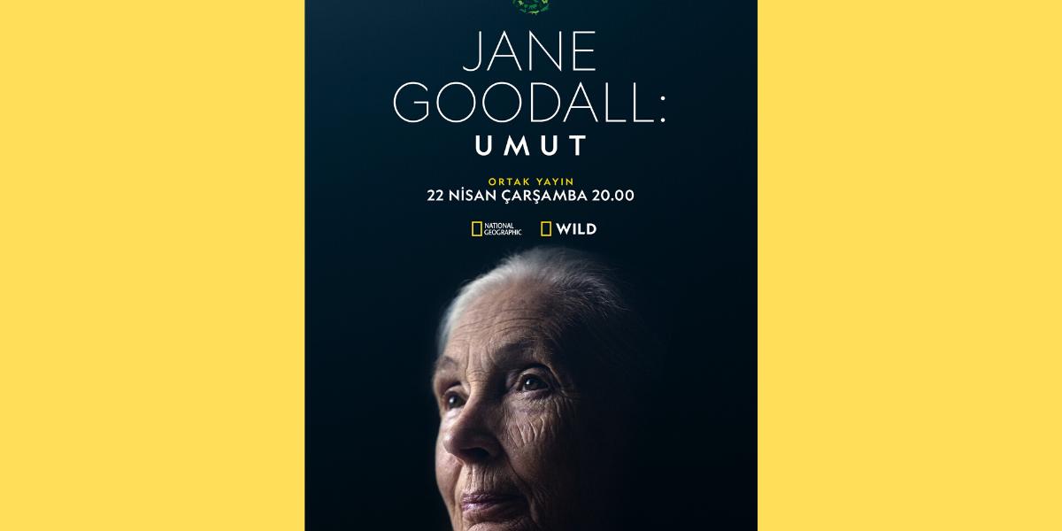 """National Geographic, Dünya Günü'nün 50. Yıldönümünü """"Jane Goodall: Umut"""" ile Kutluyor!"""