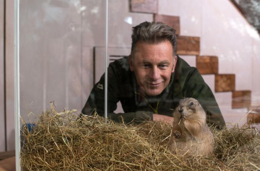 Hayvanlar Aleminin En Dahileri BBC'de